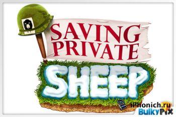 Игра на iPhone Saving Private Sheep