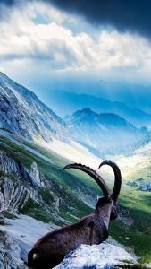 mountains_7