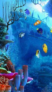 aquarium_7