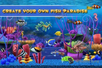Fish Paradise - увлекательная рыбалка в реальном времени