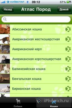 iPetsCare - справочник о котах и собаках