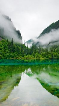 Nature-Foggy-Mountains-Calm-Lake-Forest-iPhone-6-plus-wallpaper-ilikewallpaper_com