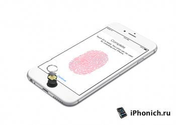 iPhone 6 и iPhone 6 Plus, фотографии