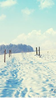 Outdoor-Sunny-Snow-Filed-Path-iPhone-6-plus-wallpaper-ilikewallpaper_com