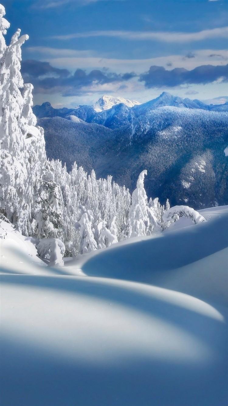 Обои На Айфон 5s Высокого Качества Зима