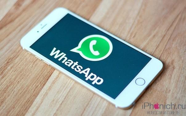 WhatsApp посоветовала пользователям перейти на iPhone